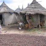 Fatou au Mali 143