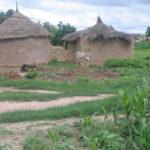 Fatou au Mali 151